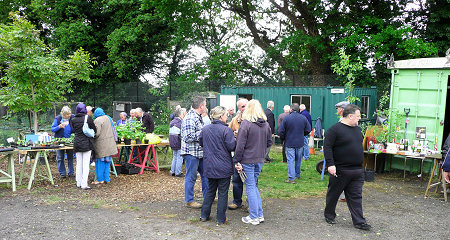 Sixth Cross Road Allotments Group. Photograph by Yvonne Hewett